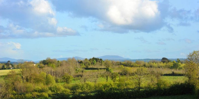 The view from our home Northern Ireland Wedding Photographers