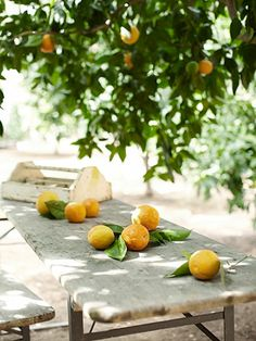 Lemons and their use around your home